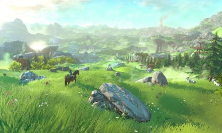 New THE LEGEND OF ZELDA Wii U Gameplay Footage