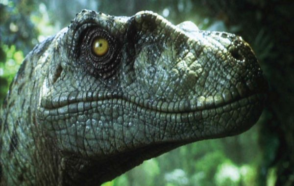 JURASSIC PARK 4 Officially Announced for 2014!